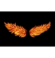 Flame Wings vector image vector image