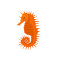 flat icon of bright orange seahorse small vector image vector image