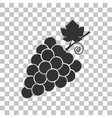 Grapes sign Dark gray icon on vector image vector image