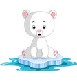 polar bear cartoon vector image vector image