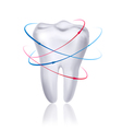 White tooth surrounded by beams Taking care of vector image vector image