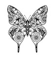 beautiful entangle ornament butterfly vector image