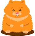 Cute Baby Hamster Isolated vector image vector image