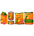 Dehydrated orange in different packaging vector image vector image