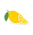 lemon slice citrus fruit flat icon lemon vector image