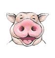 portrait of a funny laugh boar face vector image