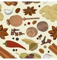 Spices condiments and herbs decorative elements vector image