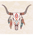 bull skull with feathers vector image vector image