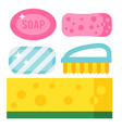 cleanser chemical housework product care wash vector image vector image