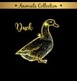 golden and royal hand drawn emblem of farm duck vector image vector image