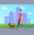 man character walking dog in city park vector image