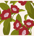 red camellia flower plant with leaves outline on vector image