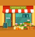 vegetable store showcase vector image