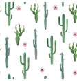 beautiful watercolor cactus seamless vector image vector image