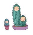 cute cartoon cactus plant in pot vector image vector image