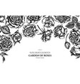 floral design with black and white roses vector image vector image