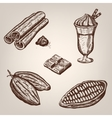 Hand drawing of cacao beans vector image vector image