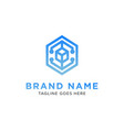 hexagon logo design inspiration vector image vector image