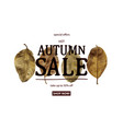 hot autumn sale vector image vector image