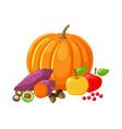 pumpkin and beetroot apples fruits veggies vector image vector image