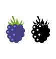 raspberry icon flat berry vector image vector image