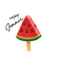 watermelon slice on a stick vector image