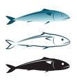 image of an mackerel design vector image