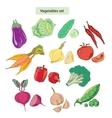 vegetables set detailed vector image