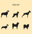 dog breeds set vector image