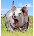 cartoon surprise great pig with open mouth vector image vector image