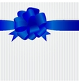 Decorative ribbon and bow on a background vector image