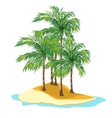 Island and palm trees on a white background vector image