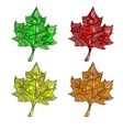 set of maple leaves vector image
