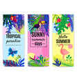 tropical paradise vertical banners collection vector image vector image