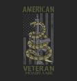 american spirit patriotic veteran vector image vector image