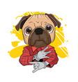 cute pug vector image vector image