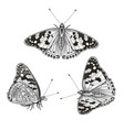 hand drawn sitting butterflies set vector image vector image