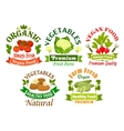 Organic vegan food emblems Vegetarian vegetables vector image vector image