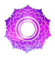 sahasrara chakra with outer space vector image vector image
