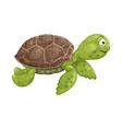 textured cartoon sea turtle on white background vector image