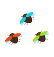 three brown bugs with different color wings vector image vector image