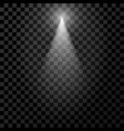 white transparent spotlight with particles vector image
