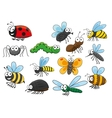 Colorful cartoon smiling insects characters vector image