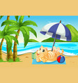 a cat relaxing next to the beach vector image
