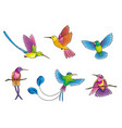 different hummingbirds vector image