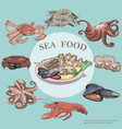 flat sea food round concept vector image