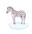 cute zebra cartoon icon graphic design vector image