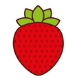 delicious fruit strawberry isolated icon design vector image vector image