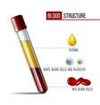 glassware tube filled fractioned blood plasma and vector image vector image