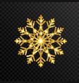 glitter golden snowflakes on transparent vector image